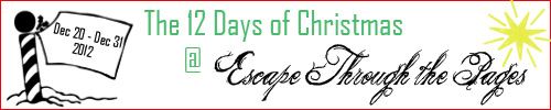 12 Days of Christmas 2012 Banner